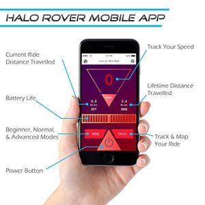 How the mobile app works and what it does